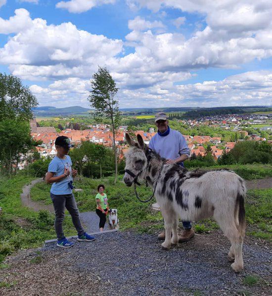 Deutsche-Eiche-Esel-Wanderung-Freude