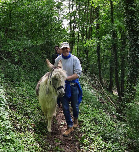 Deutsche-Eiche-Esel-Wanderung